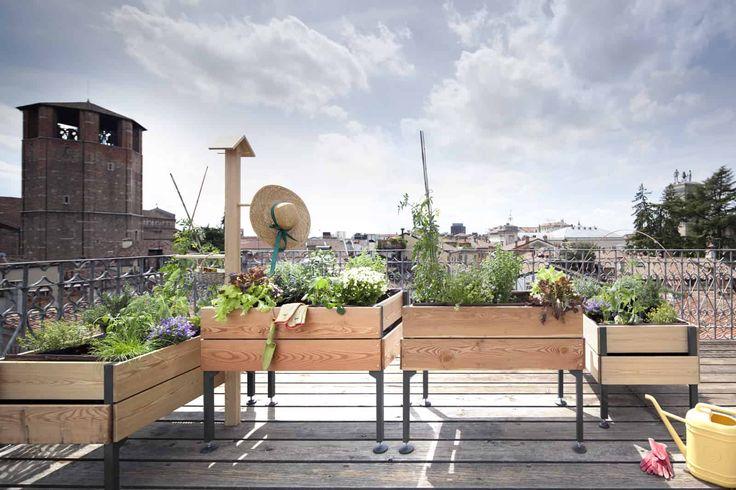 Organizzare un orto sul balcone! Ecco 20 idee da cui trarre ispirazione   VIDEO