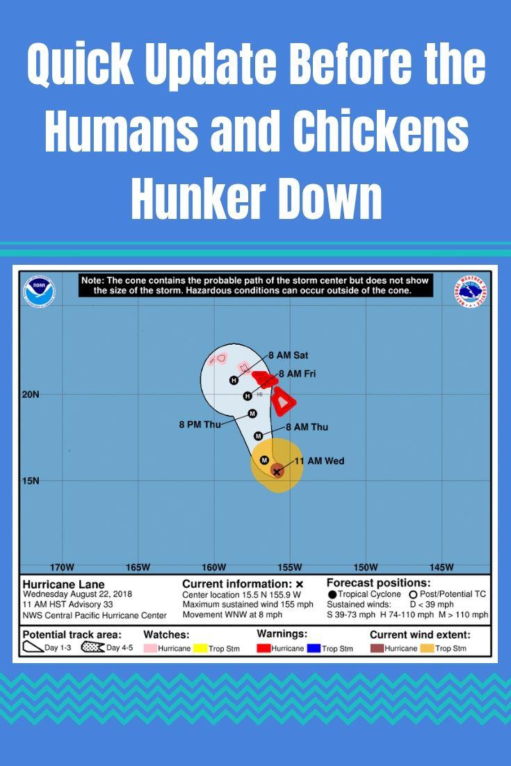 Quick Update Before The Humans And Chickens Hunker Down Noaa Hurricane About Me Blog Storm Center