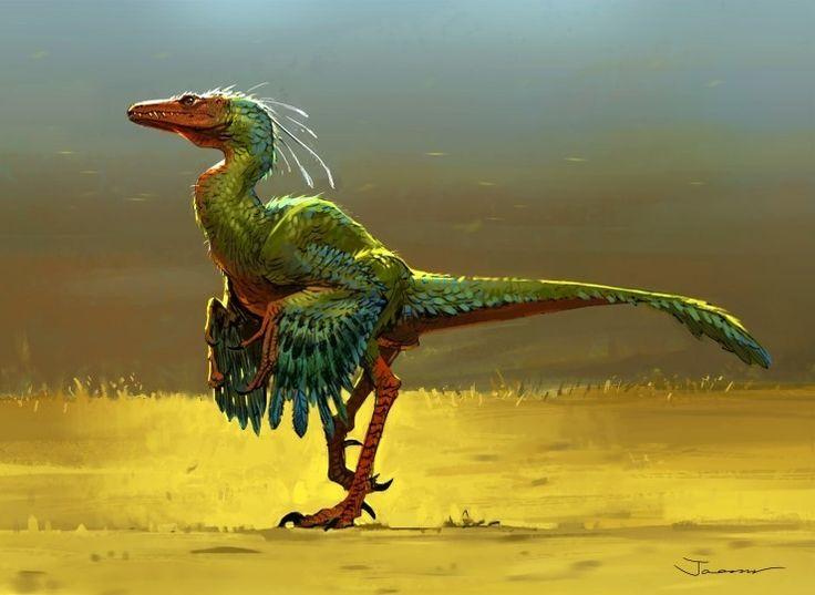 feathered flying dinosaurs wwwimgkidcom the image