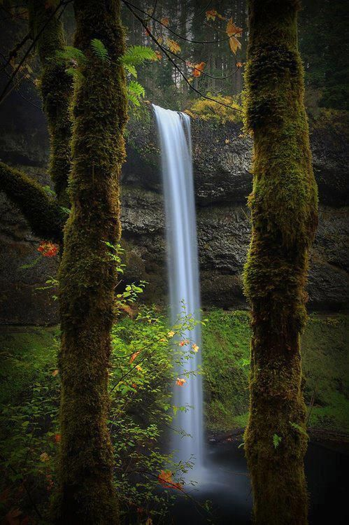 Framed Waterfall, Silverton, Oregon | Most Beautiful Pages