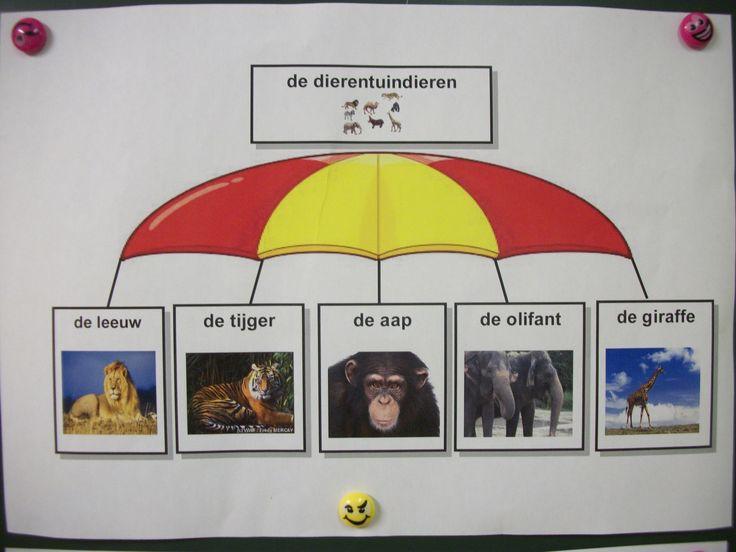 Woordparaplu met dierentuindieren