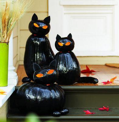 cat jack o' lanterns.