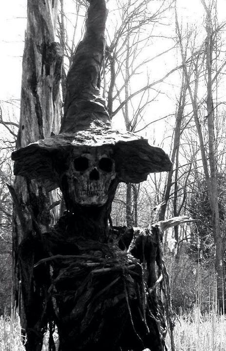 Spirit halloween contest...boo!!!:)(veronica d) Halloween decorations Skelton witch outdoor Decore, scary cool!