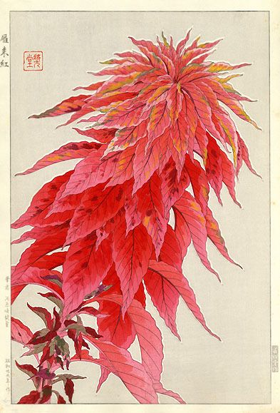 """Amaranth"" Red by Kawarazaki Shodo, 1955."