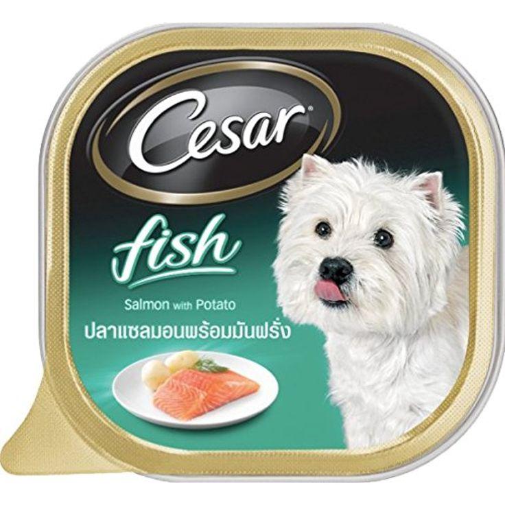 Cesar dog food salmon potato 35 oz pack of 6 the