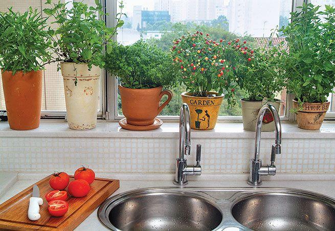 Tem coisa melhor que cozinhar com tempero fresco? Tenha uma horta na janela