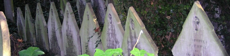 Tower Hamlets Cemetery Park. For wildlife, greenery, history and space.  http://www.towerhamletscemetery.org/