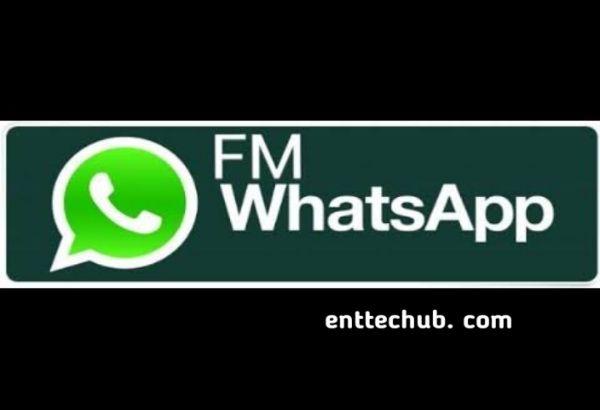 Fm Whats App Gb