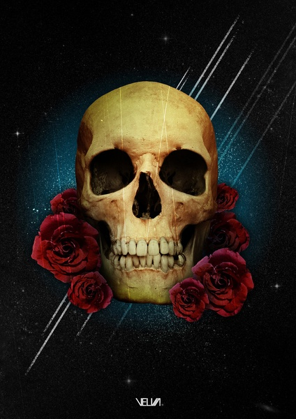 Skull and Roses  by Guilherme Rosa // Velvia  http://www.creativeboysclub.com/