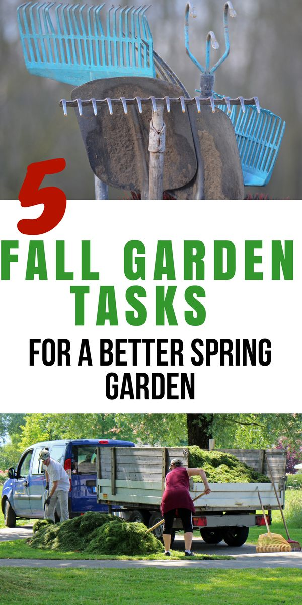 The year before last we were super lazy about our fall garden tasks and last year ended up being one of our worst garden years ever. #fallgardening #gardening