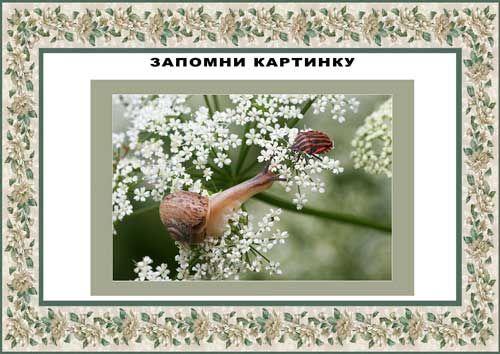 """игры по теме """"Насекомые  """"http://azbuka-uma.by/sbornik_nasekomie"""
