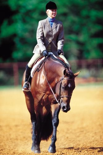 My all time favorite horse, Hot N Blazing with his owner Courtney Battison