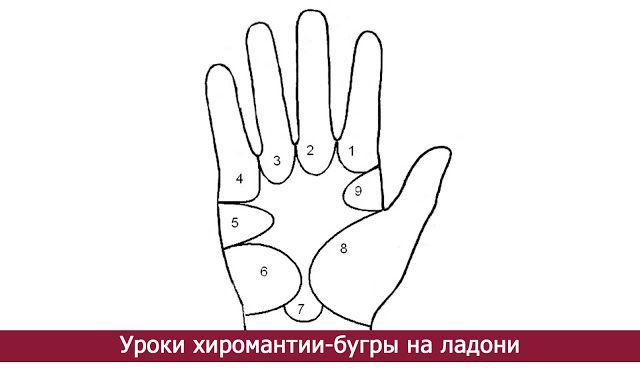 Уроки хиромантии-бугры на ладони - Эзотерика и самопознание