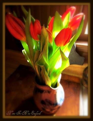 <3: Tulipsmi Favorite, Tulips Mi Favorite, Red Tulipsmi, Red Tulips Mi