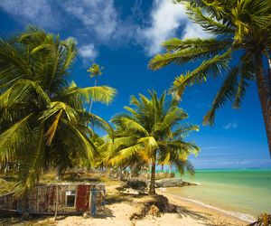 Praia Patacho - Alagoas