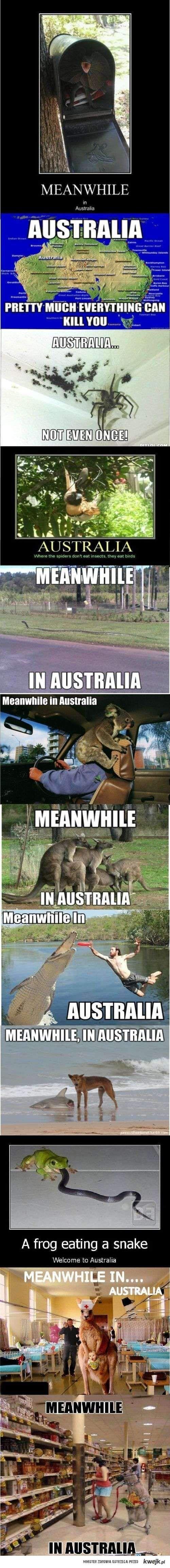 Assshhhllleeeeeyyyyyy....ummm, do we still have to visit Australia??????