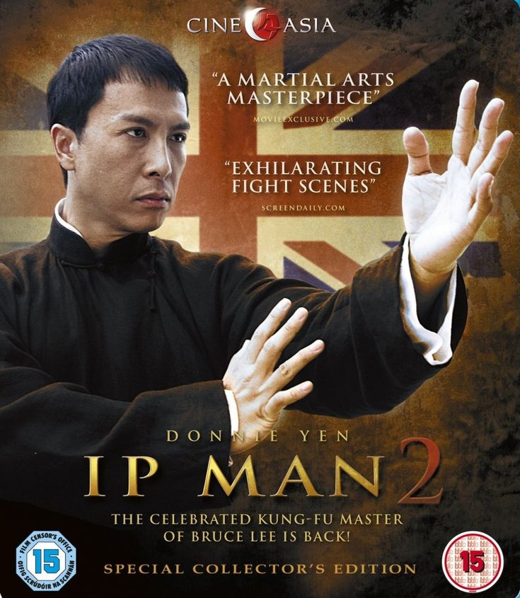 ip man 1 full movie english version 2008