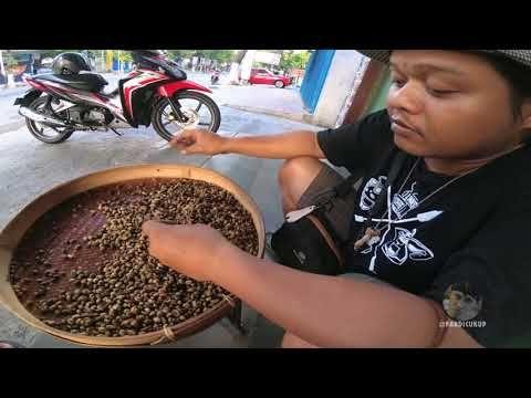 Kopi Luwak haram/halal? ini faktanya bersama Links Coffee Shop - YouTube