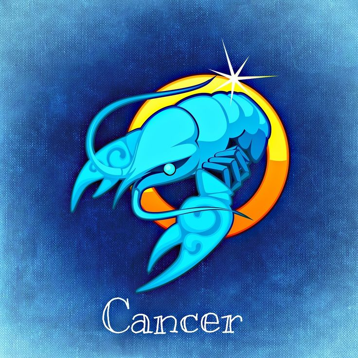 Cancer Love Profile - Loyalty. The best match for a Cancer is a Pisces. Their family is very important to Cancer natives. As they are faithful, Cancers are looking for a life-time partner. A Cancer native is stable and wants something meaningful.