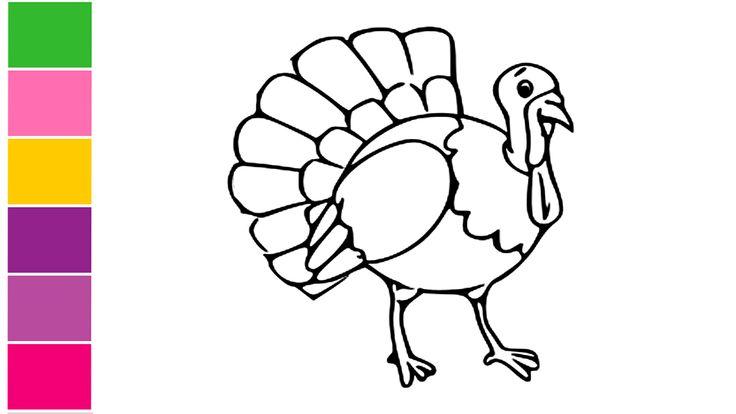 Learn How to draw turkey - How to draw a turkey cartoon ...