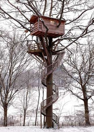 tiny-hou Living in the Treetops This company has brought a childhood dream of living in a tree house to life. Learn more at La Cabane Perchee. ses