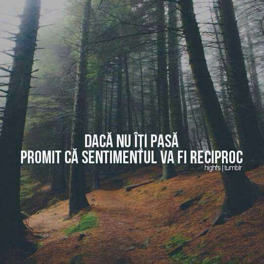 Promit!