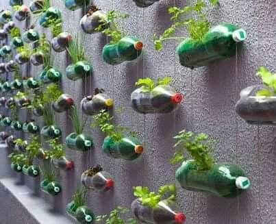 Good use of bottles :)