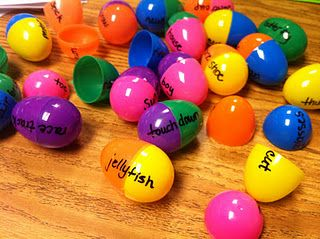 compound word eggs...could also be done with contractions-put the two words on the outside and the contraction on the inside-use like flashcards