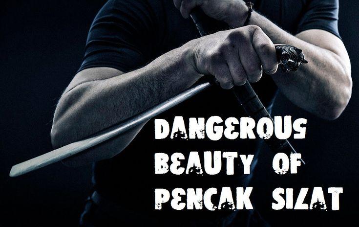 Unbelievable Beauty of Pencak Silat by Alexander Skaldin