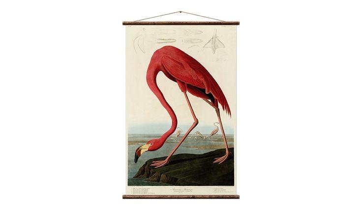MONOQI | Wandtafel - Flamingo