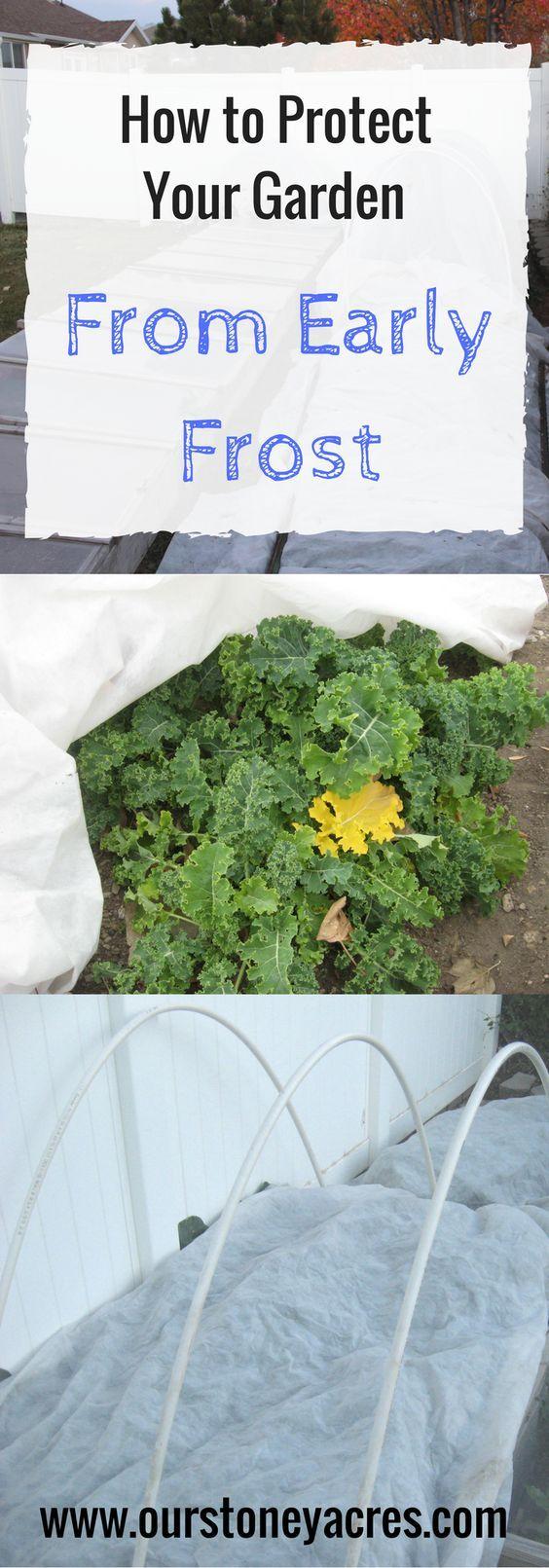 779 best gardening images on pinterest vegetable garden