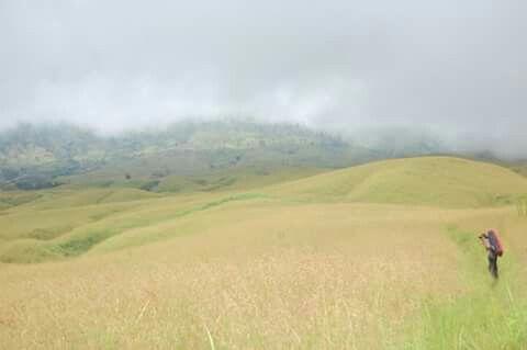 Sembalun track...rinjani mountain..