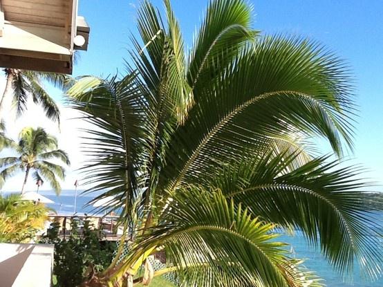 Vanuatu - Iririki Resort, Port Vila#Pin By:Pinterest++ for iPad#