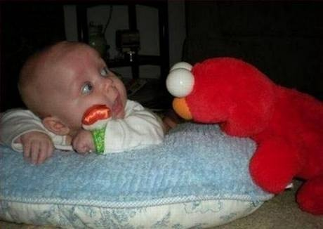 Tickle me Elmo ATTACKS!: Random Funny, Baby Pics, Funny Stuff, Baby Faces, Mr. Big, Big Eye, Pictures Galleries, Funny Baby, Kid