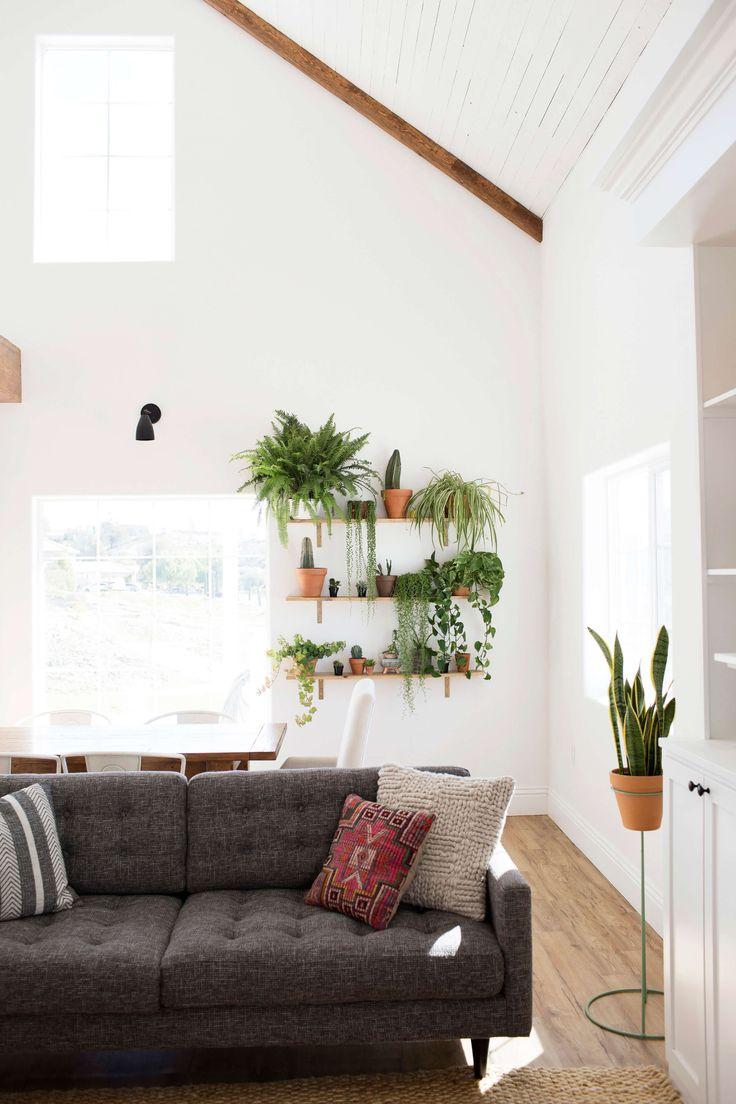 Repisas con plantas