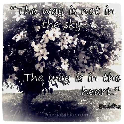 (100+) sky quotes | Tumblr