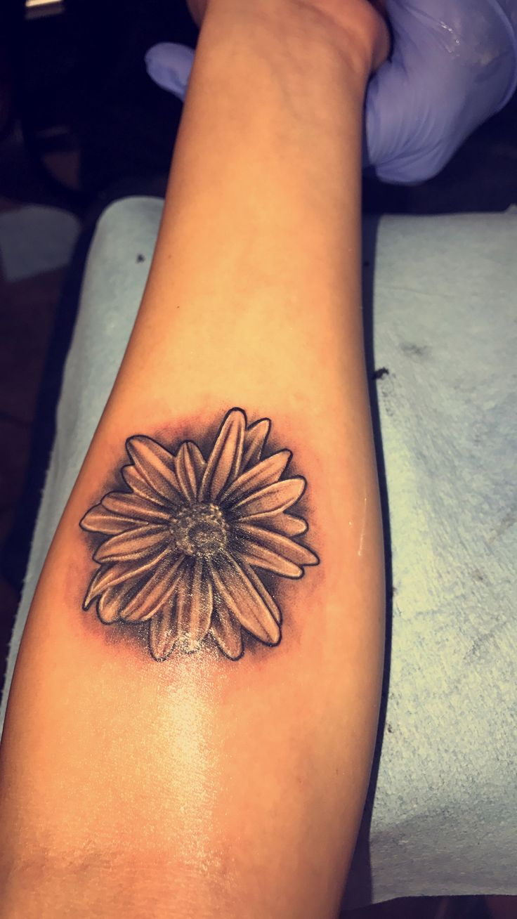 Aster tattoo #tattoonumber7 #Asterflowertattoo #septemberbirthflower #flowertattoo