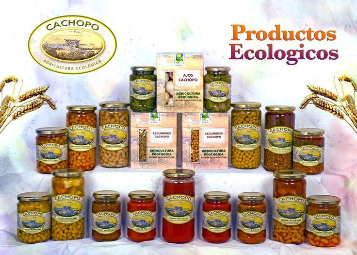 Alimentos vegetales ecológicos Conservas Cachopo http://www.generacionnatura.org/directorio/agricultura-ecologica/117-cachopo.html