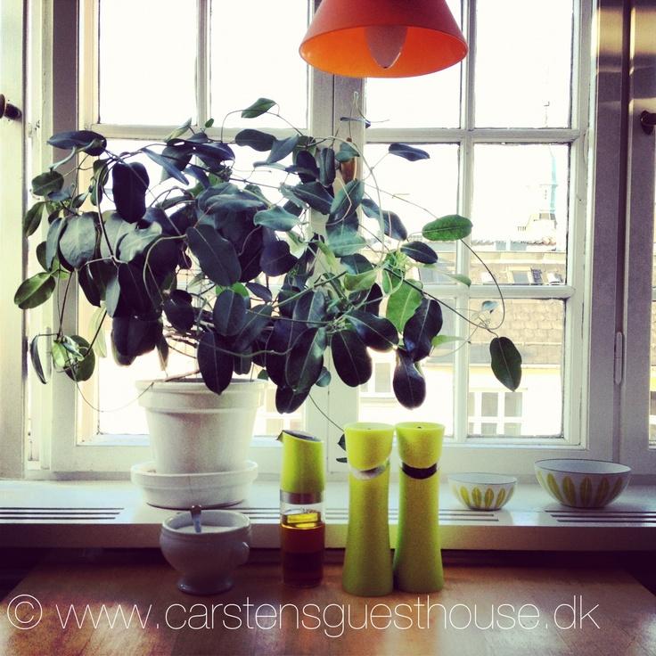 The kitchen window at Carsten´s Guest House Copenhagen www.carstensguesthouse.dk