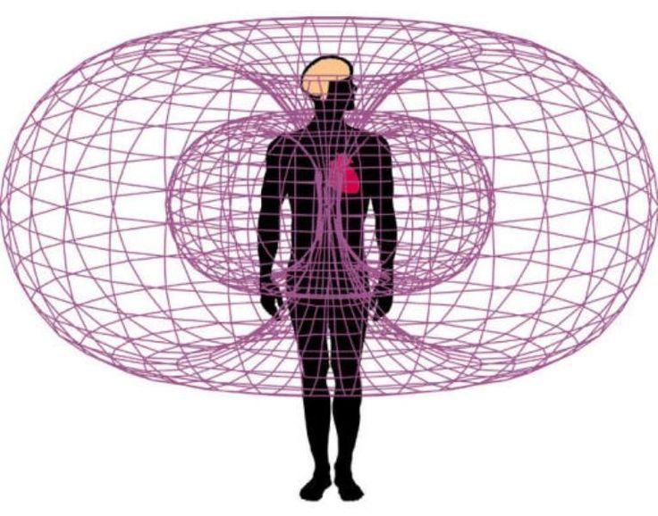 La ciencia explica la inteligencia intuitiva del corazón