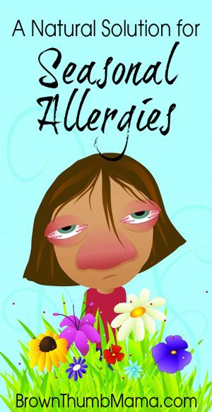 A Natural Solution for Seasonal Allergies: BrownThumbMama.com