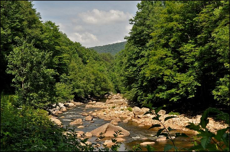 Williams River in Monongahela National Forest, Pocahontas County, West Virginia