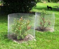 Stránky o zahradničení