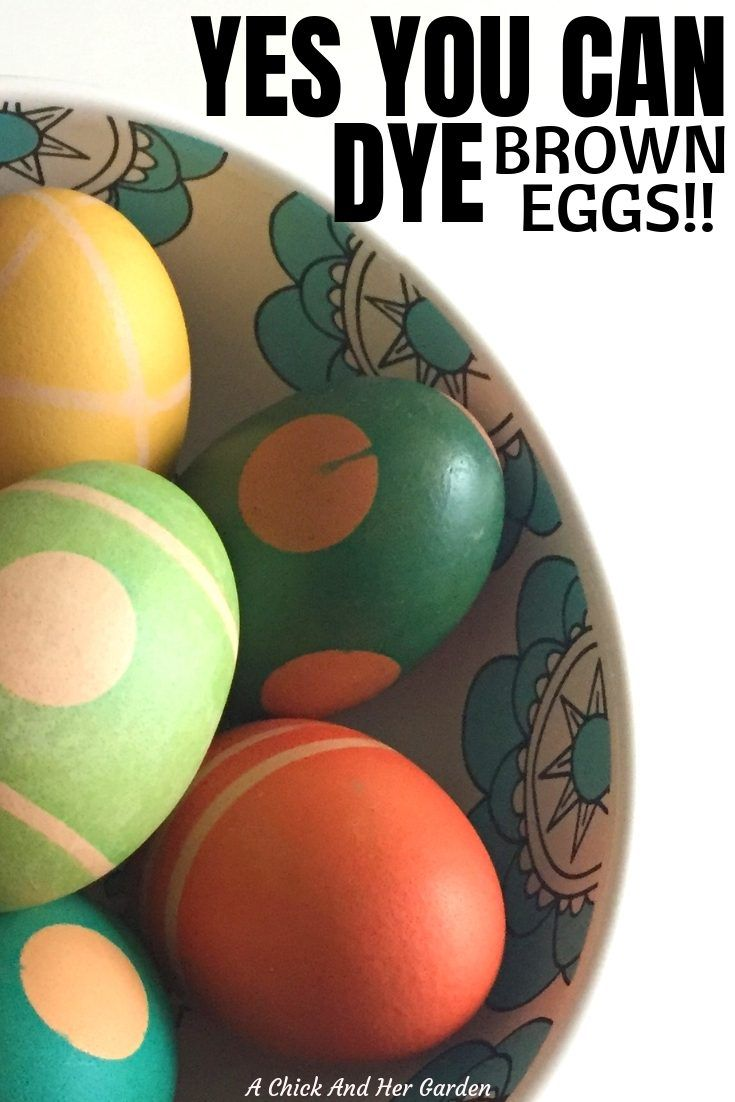 But, Can You Dye Brown Eggs?   The Best of A Chick And Her