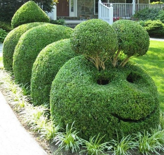 Wonderful Topiary Ideas Part - 3: Pinehurst NC Landscaping: Green Dreams Landscape Management, Inc. Is The  Sandhillsu0027 Emerging Leader In Landscape Services And Moore County NC  Landscaping.