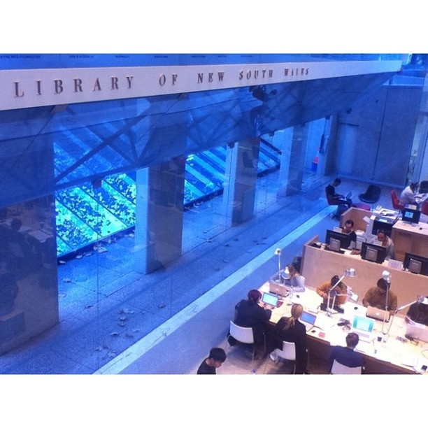 .@Henry Lee   Study and light, 26 May 2013 #statelibrarynsw #sydney