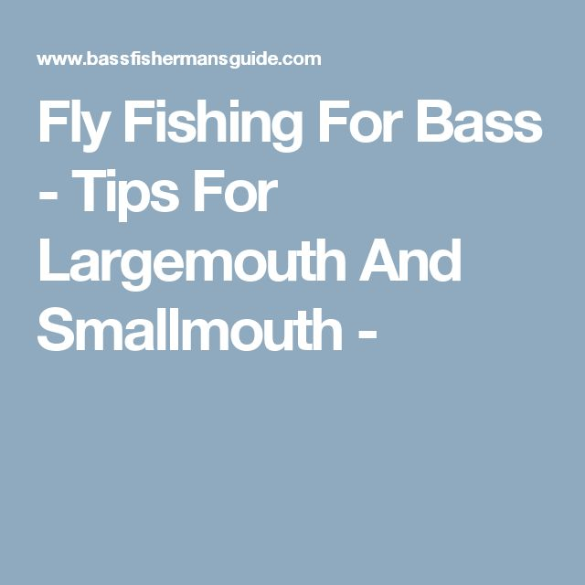 Fly Fishing For Bass - Tips For Largemouth And Smallmouth -