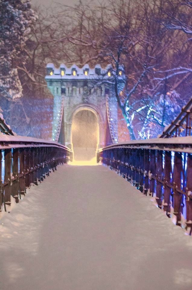 Suspended bridge - Craiova, Romania