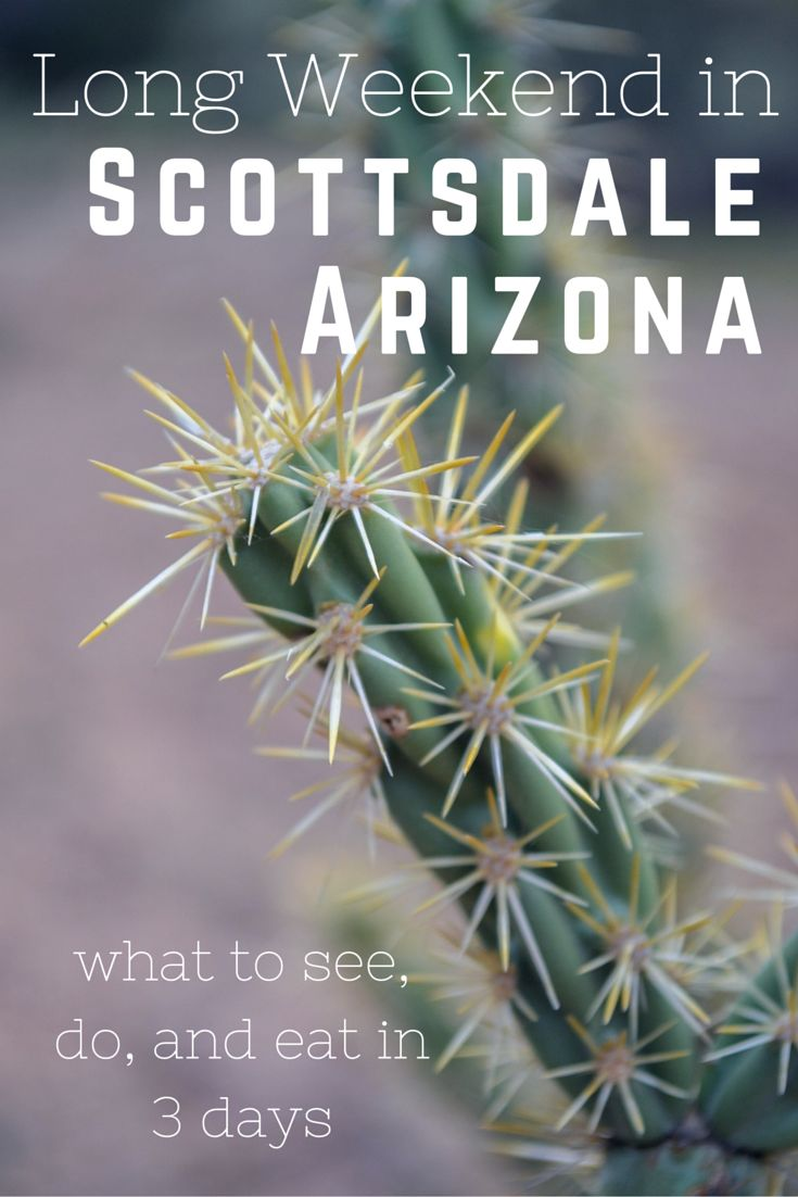 A Long Weekend in Scottsdale, Arizona: What to See, What to Do, Where to Stay, and What to Eat (Essentially everything you need to know about this city!) - What to do in scottsdale | http://apassionandapassport.com/2016/01/a-long-weekend-in-scottsdale-arizona/