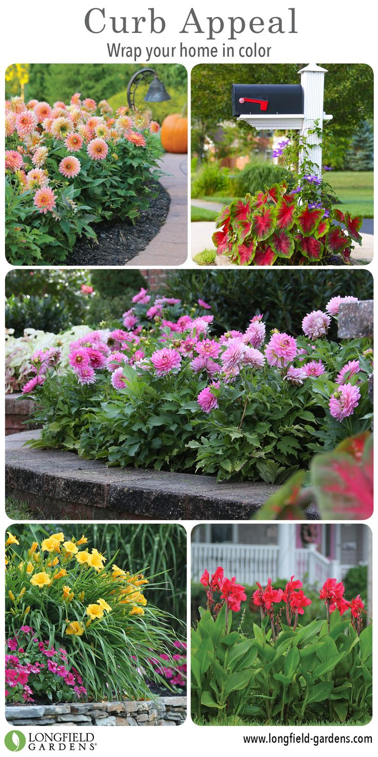 37 best Curb Appeal images on Pinterest | Curb appeal, Flower beds